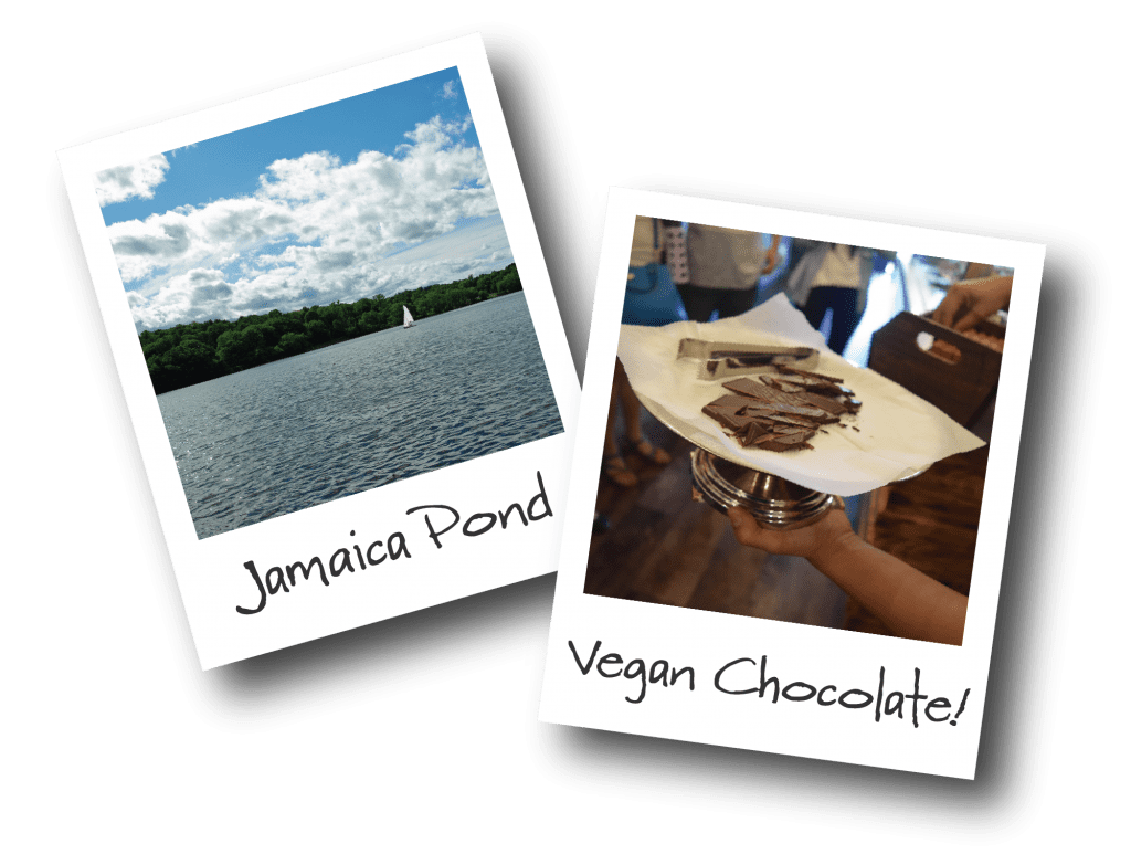 Two polaroids showing Jamaica Pond and a platter full of chocolates.